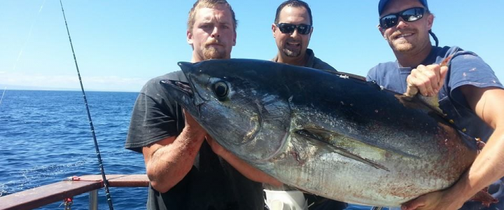 Tips For Catching Yellowfin Tuna
