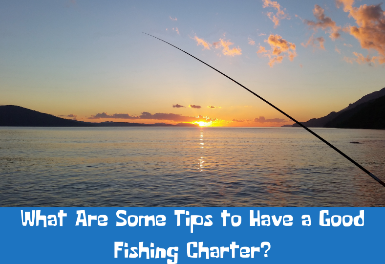 Tips to Have a Good Fishing Charter