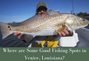 Fishing Spots in Venice Louisiana